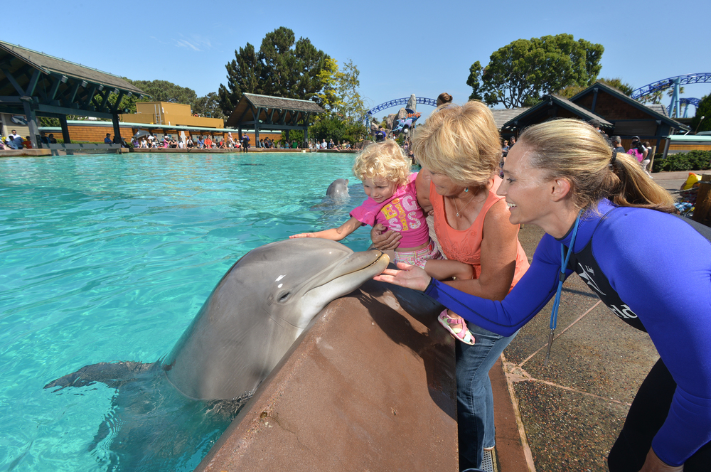 3/SeaWorld San Diego