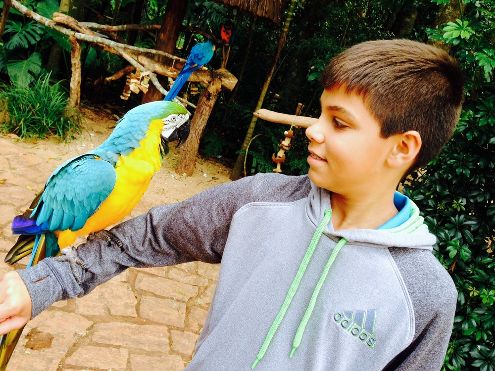 (25)  Aidan describes his visit to the Bird Park as %22totally awesome.%22.JPG