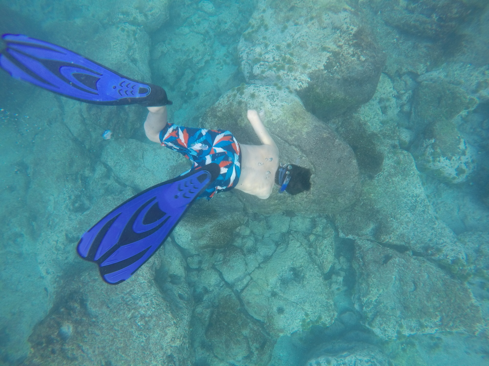 Day 1 (snorkeling).JPG