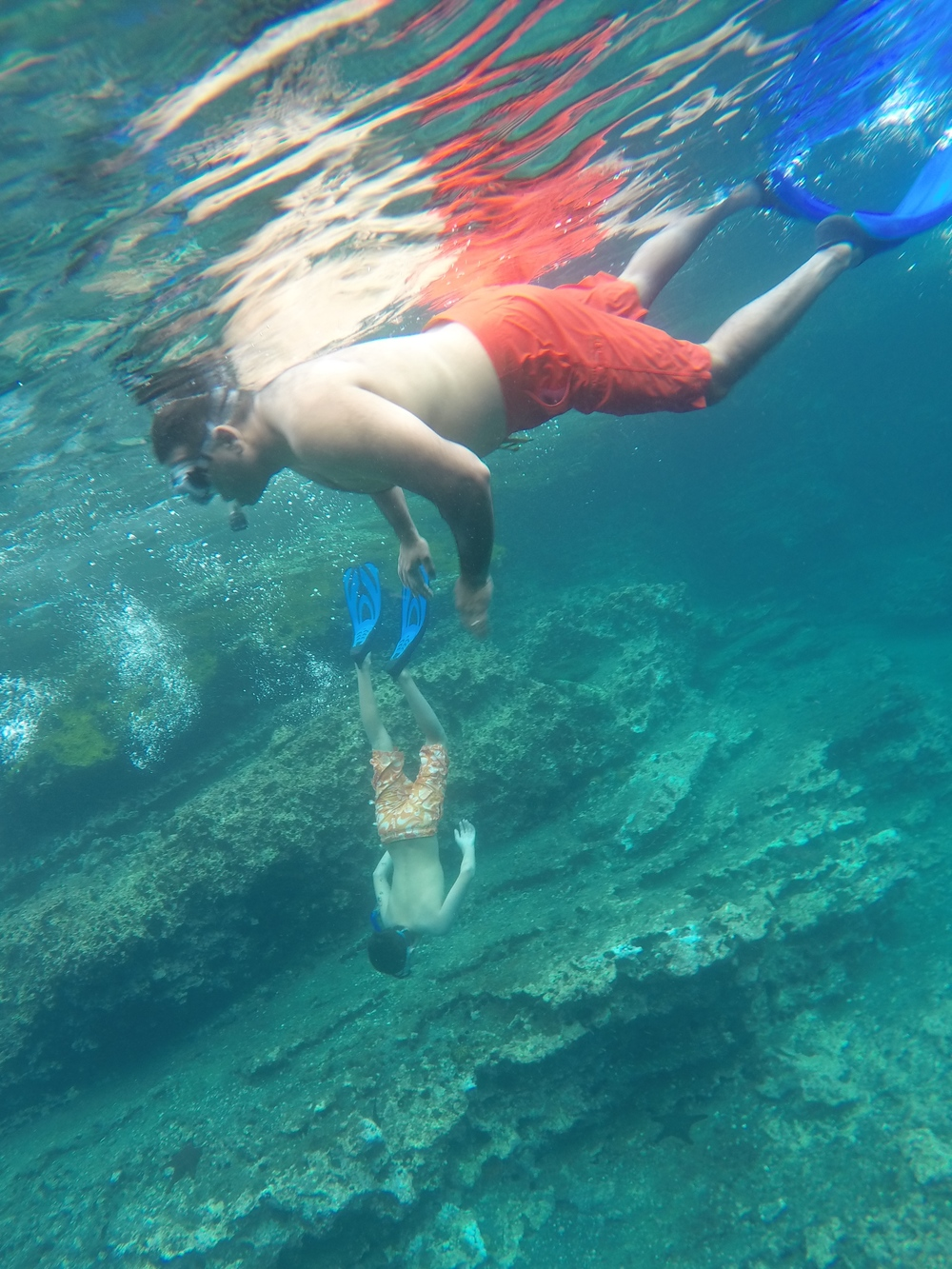 Day 5 (snorkeling).JPG