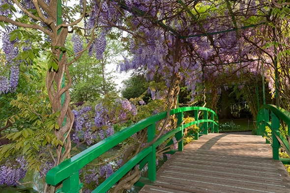 8/Wander Monet's home and gardens