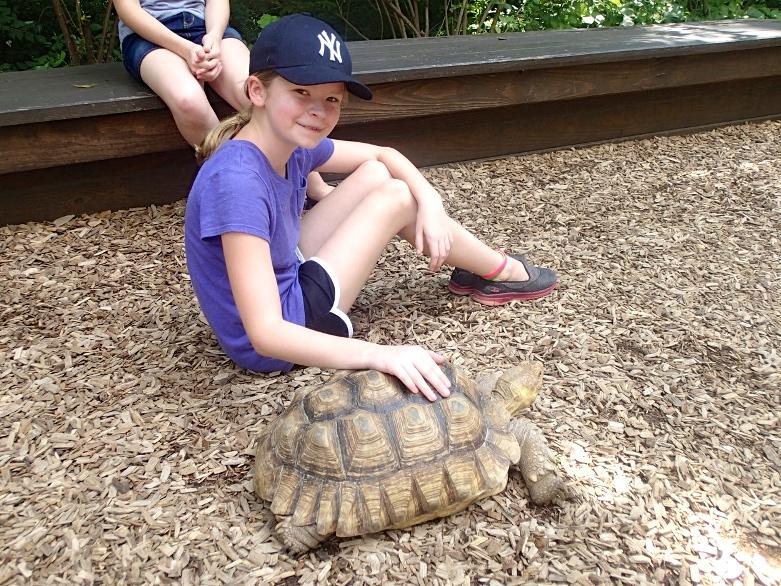 7/Nashville Zoo
