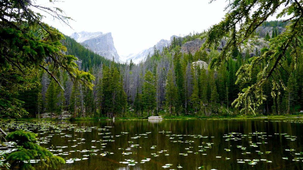 2/Emerald Lake, Rocky Mountain National Park, Colorado