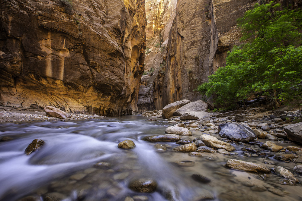 4/The Narrows, Zion National Park, Utah