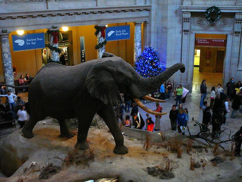 6/Smithsonian Holiday Festival