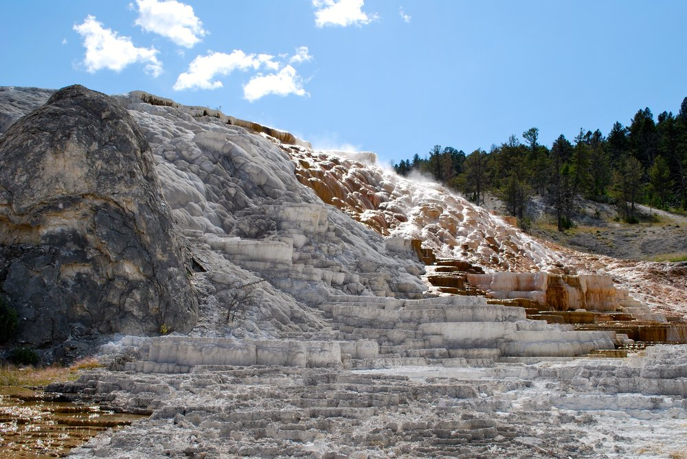 Mammoth Hot Springs area