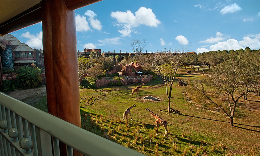 3/Disney's Animal Kingdom Lodge