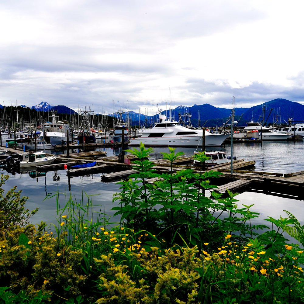 6-24-18 Sitka marina mountains.JPG