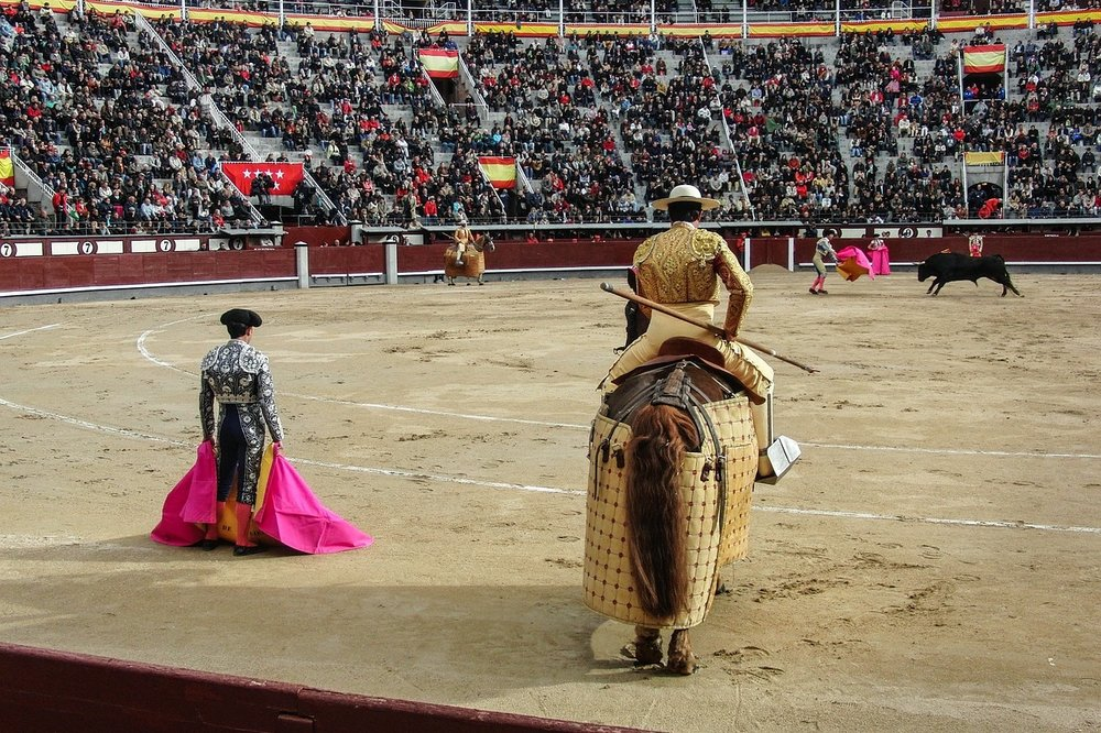 9/What about bullfights?