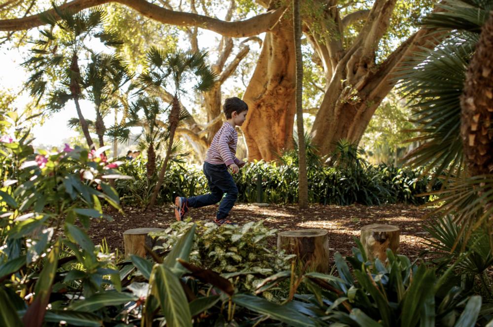 8/Royal Botanic Garden