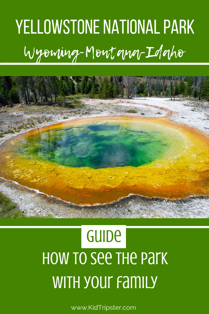 family vacation to yellowstone national park
