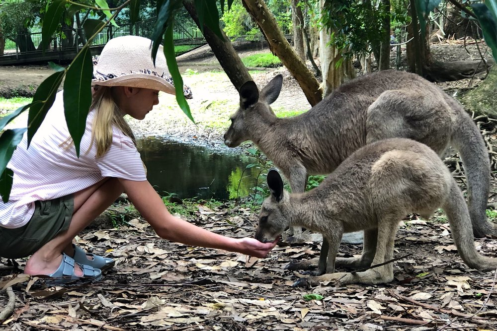 5/Australia Zoo