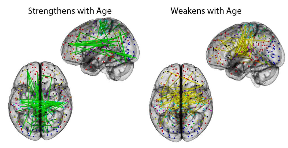 Satterthwaite et al., Neuroimage 2014