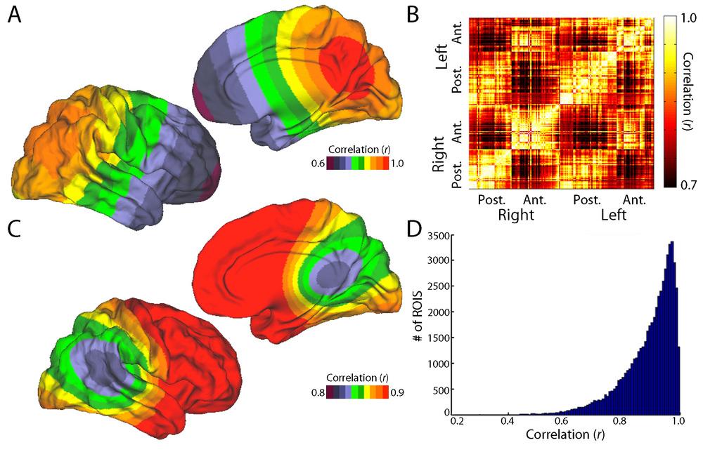 Satterthwaite et al., Neuroimage 2013
