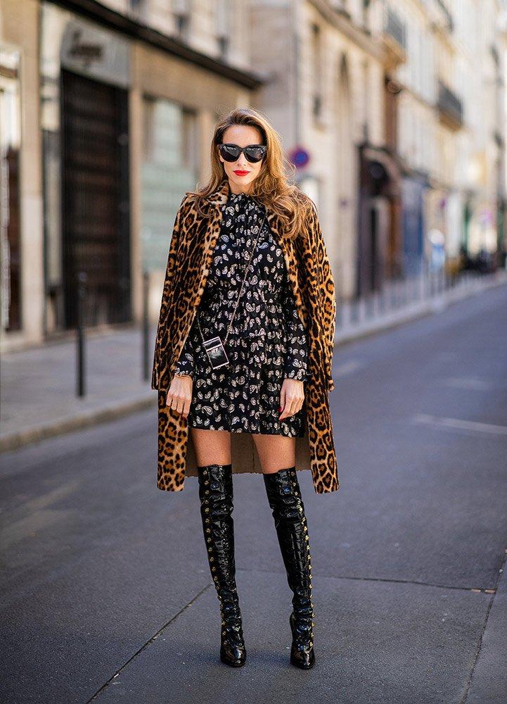 leopard_24.jpg