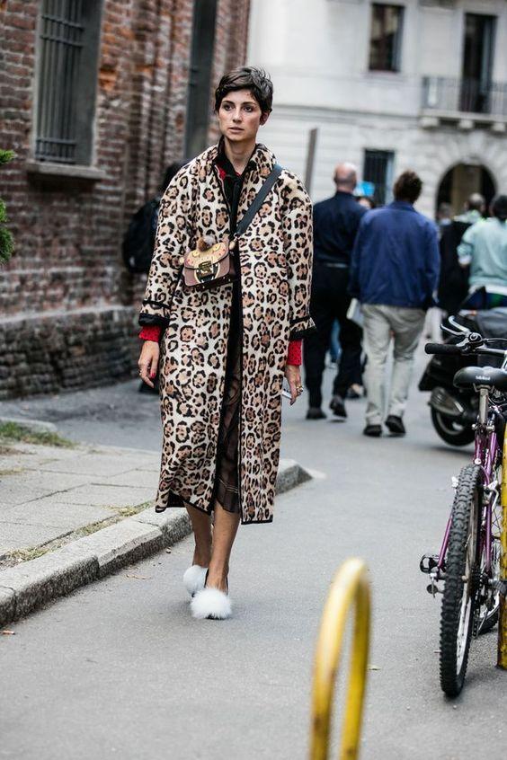 leopard_76.jpg
