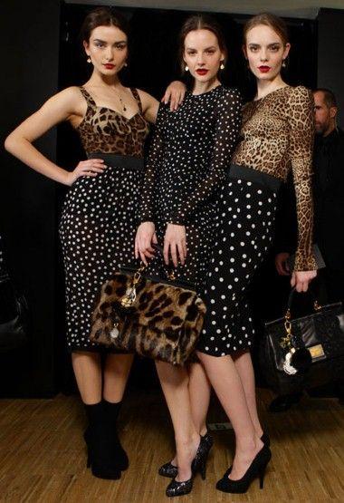 leopard_60.jpg