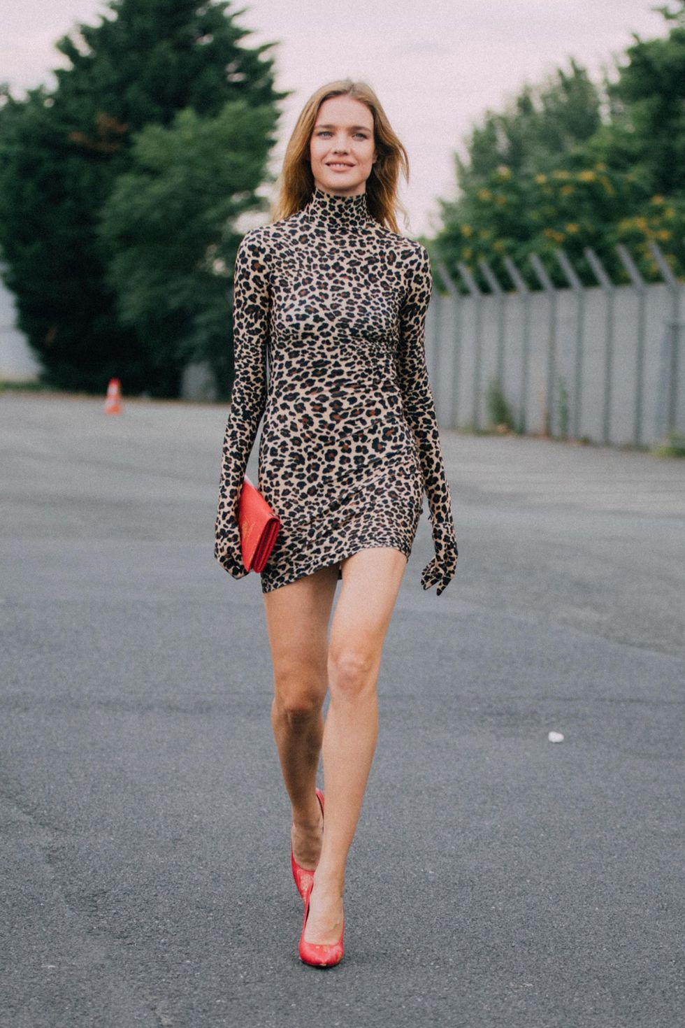 leopard_22.jpg