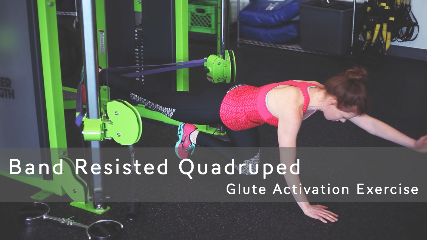 Strong Glutes Are A Must - Band Resisted Quadruped — Merit Fit