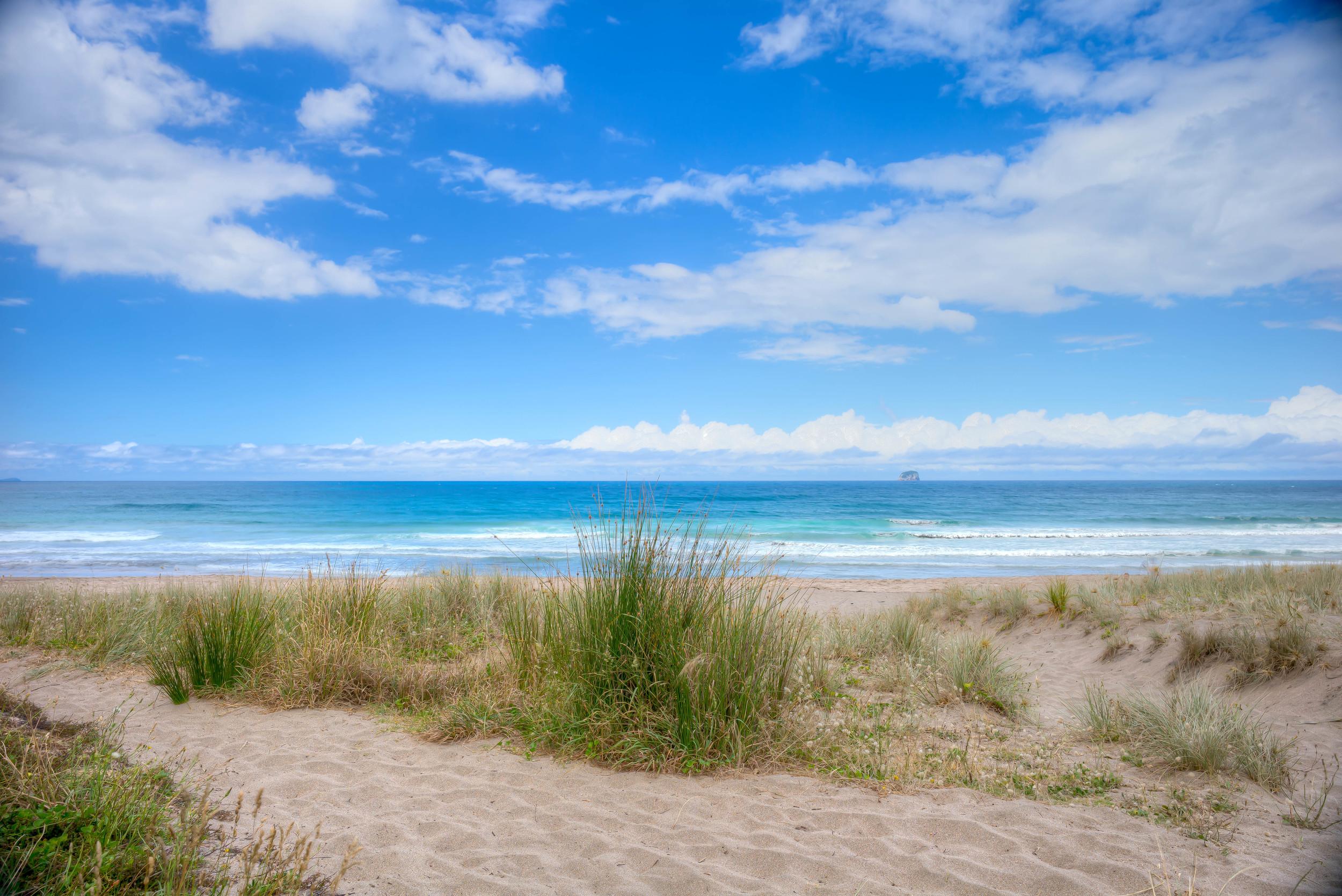 Hot water beach (2)