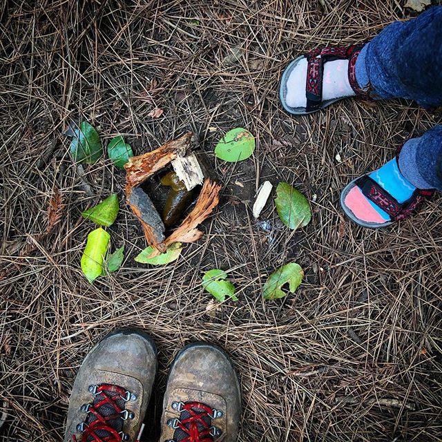 🐌 sluggy observations 👀 #bananaslug #childrenatnatureplay