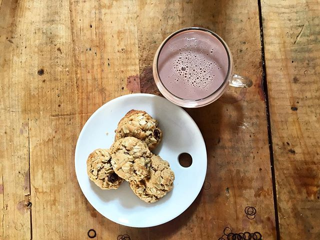 Here's a holiday treat the whole family can enjoy: Wholesome Cookies + Hot Cacao Bliss! Made with whole wheat flour, honey, and coconut oil, they're just as healthy as they are delicious. Click the link in our bio for the entire recipe! #tonicjuicery #realpeoplewhojuice
