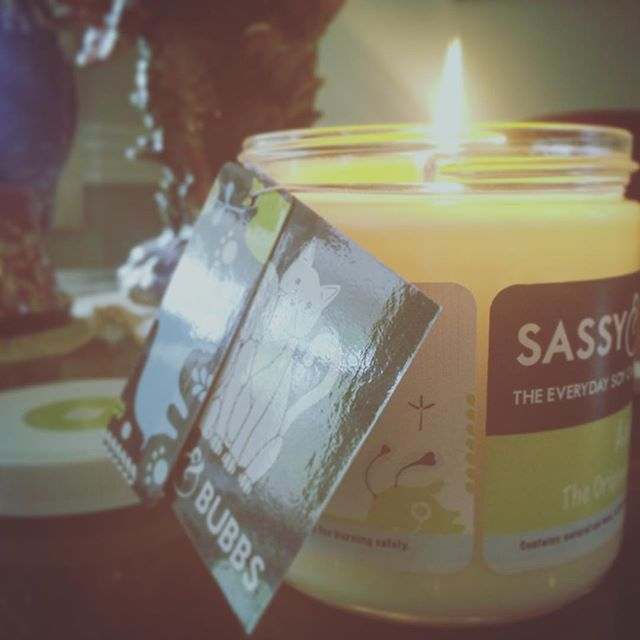 Kill pet odors with Sassy and Bubbs Candles! The Everyday Soy Candle For Pet Lovers! www.sassyandbubbs.com