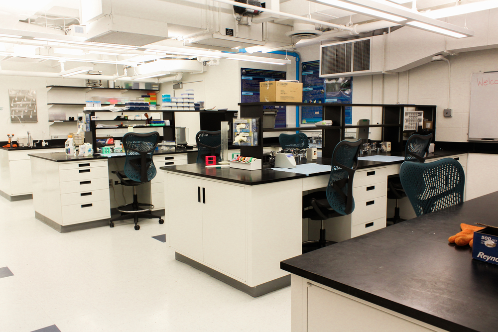 Lab Renovations.jpg