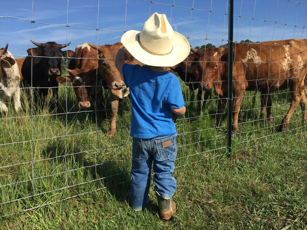 We are a Genuine MS family farm focusing not only on providing our customers BETTER BEEF but also stewardship of land and livestock to preserve a heritage for future generations. Raising kids and cattle, loving life, and thanking the good LORD for everything!