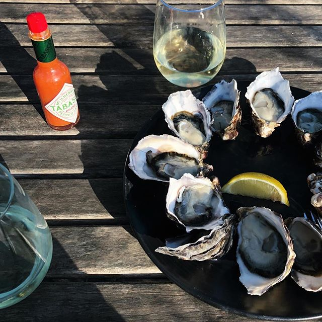 • Sunshine, Bruny Island oysters and something to quench our thirsts. Team Tucker is in heaven.