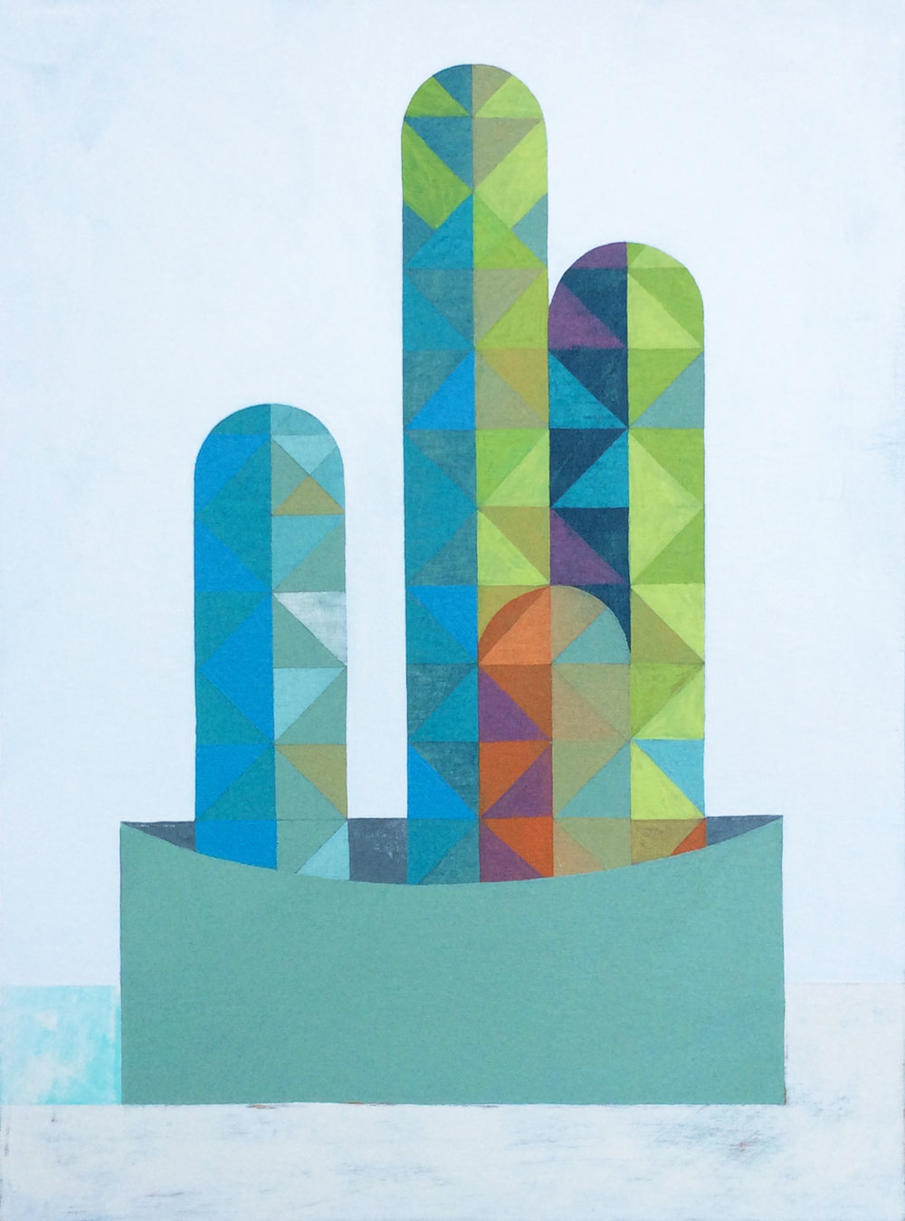 Moonshine Cactus