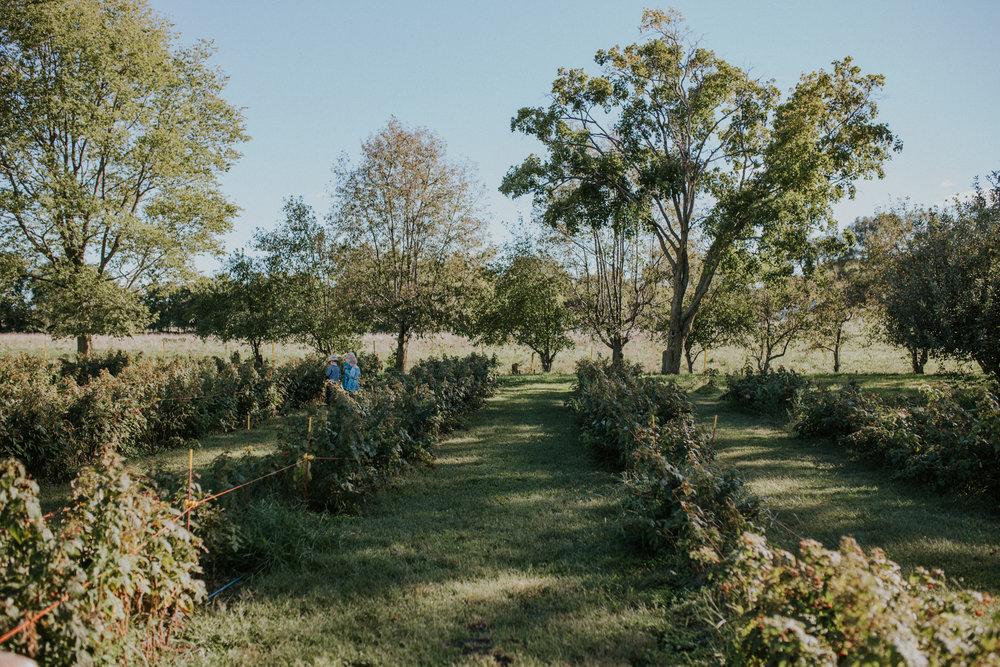 Orchard Friends-5257.jpg