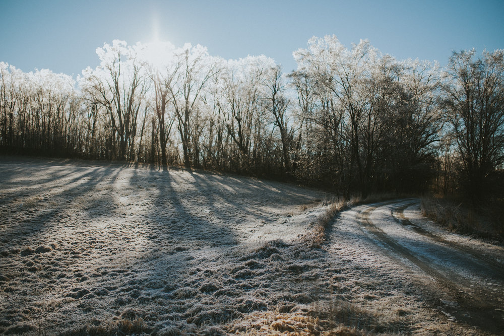 Ice Storm-0714.jpg