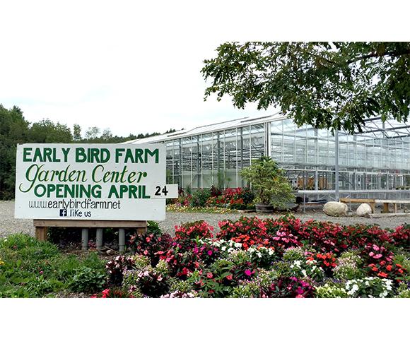 Greenhouse-image1.jpg