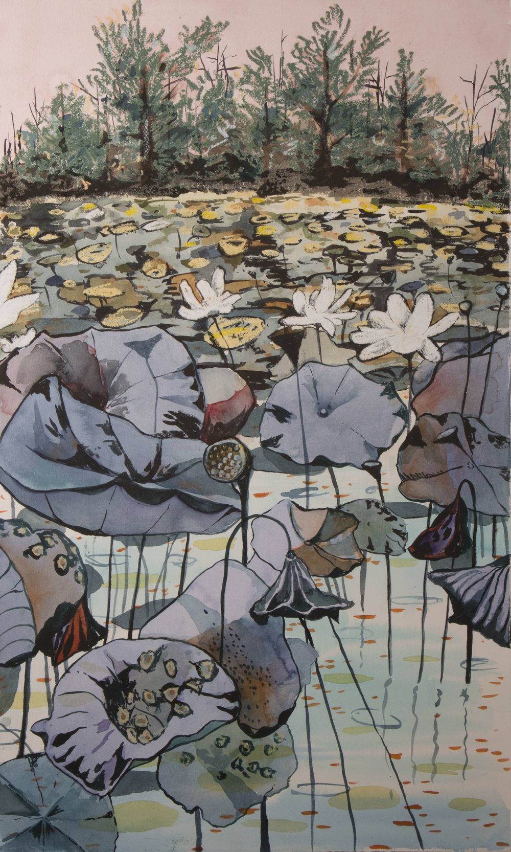 "Lily Pond  18"" x 30"" waterolor and oil on pastelc"