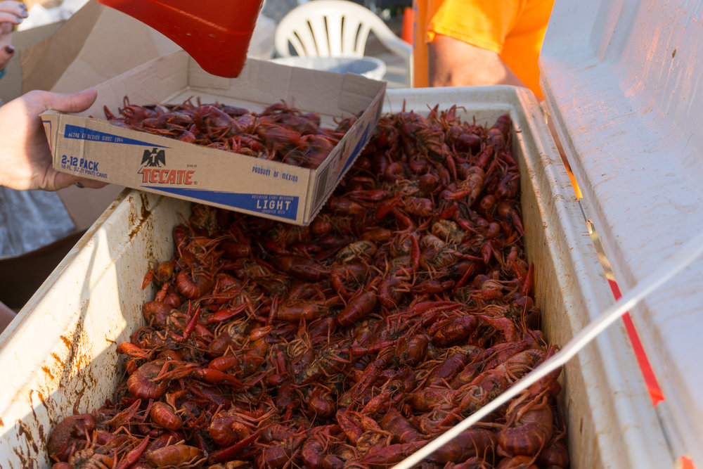 4.9.17 Crawfish Boil Eastside (11 of 21).jpg
