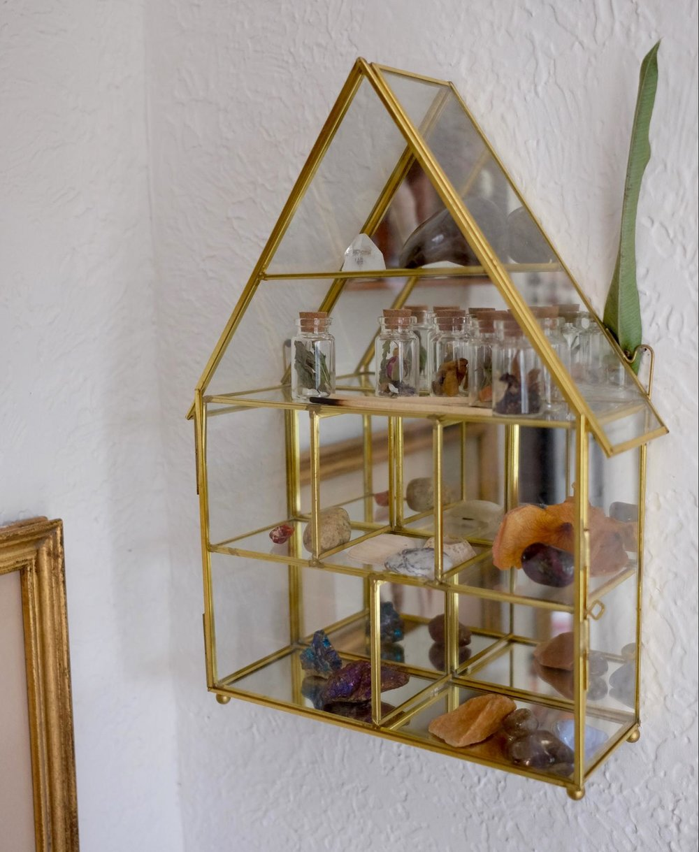 Gold framed glass display. Displays more botanical curios.