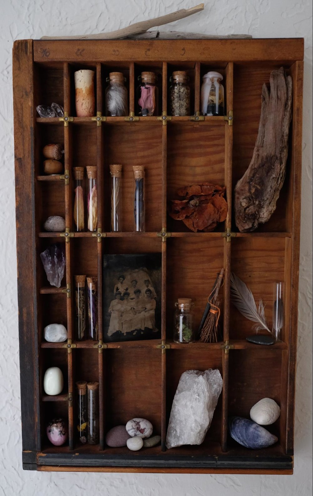 Printer's tray. Displays botanical curios collected from my travels.