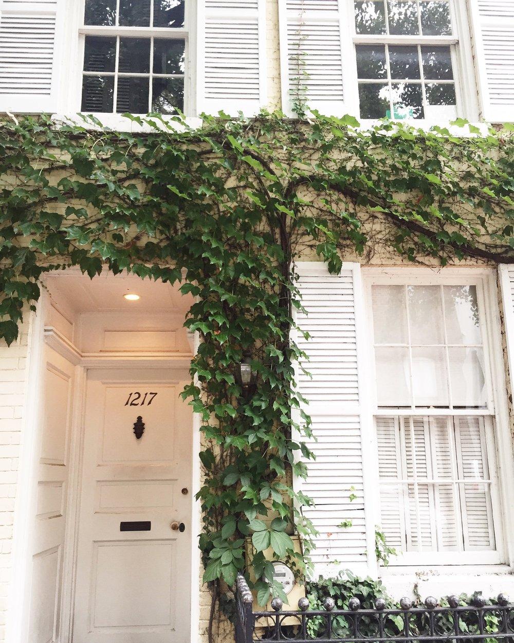 Georgetown, Washington D.C. / August '16