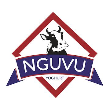Nguvu-Logo-small.png