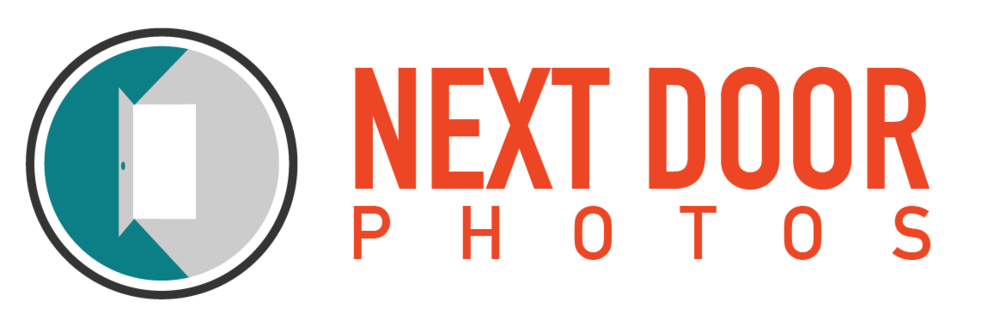 NDP-logo-bkgrd-white.png