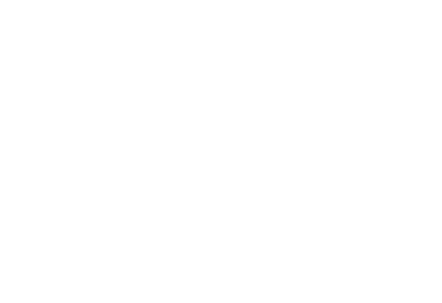 Big Smiles Program