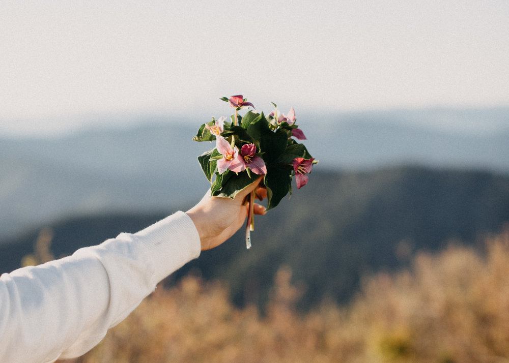 elope in the pnw,     oregon elopement    columbia gorge elopement,    waterfall elopement, washington elopement, cascade mountain elopement, north cascades elopement