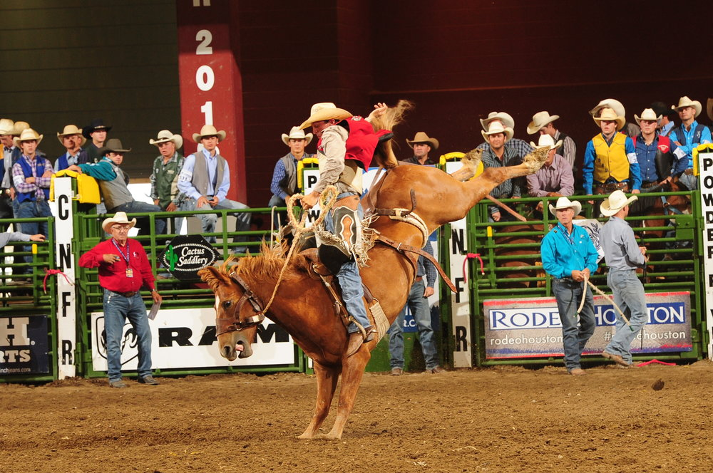 Nick Chew hangs on while the steed below him kicks and bucks!