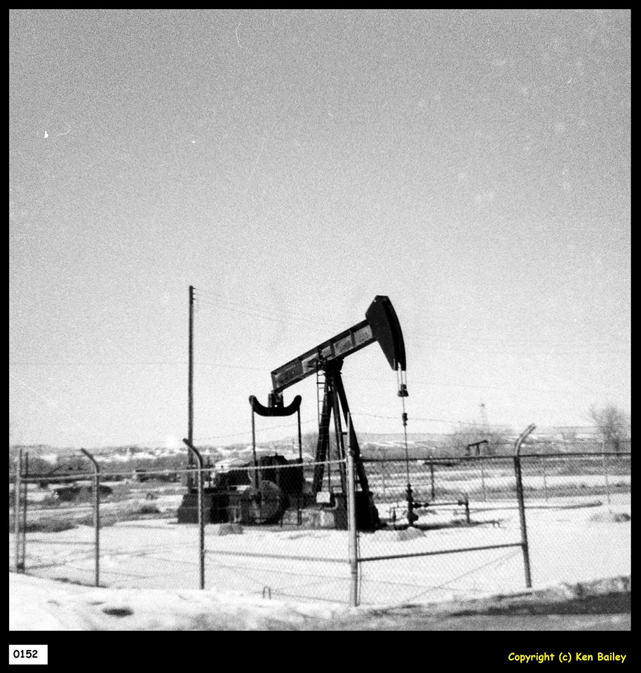 """Here we see #4 in the winter of 1970-71. The clean horse-head is a stark contrast to the muddy walking beam.  If you look carefully, to the right of #4 and forty acres distant, sister well M.E. Hefley #2 still has her derrick tower. Oil wells in the deep field were drilled in a careful pattern like a checkerboard, four wells on the square, and the """"forty acre"""" stuff was measuring diagonally across the square.  Here, #4 and #2 and seen looking diagonally across the square; #3 and Cobb-Hefley-Stringer #2, both outside the frame of the picture, complete the square.  In the exact center of the square, halfway between #4 and #2, is a newer well, Mary Hefely #5X, drilled in 1969 (the original four were drilled in the later 1940's). Beginning in 1963, Chevron resumed drilling and added a fifth well in the center of squares all over the oil field. Called, """"infill wells"""" the newcomers had numbers that ended in """"X"""" to differentiate them from the original wells.  Within a little over a decade, much of the field had been outfitted with """"infill wells"""" in the middle of the squares."""