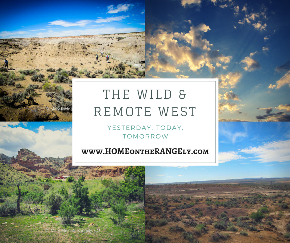 The Wild and Remote West
