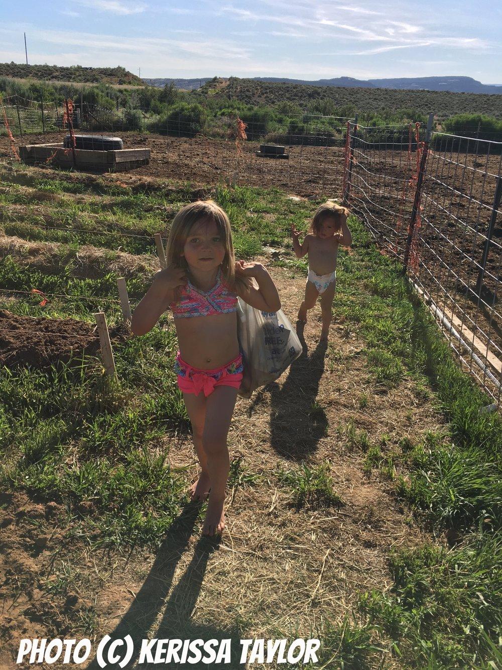 Garden Dirt Play