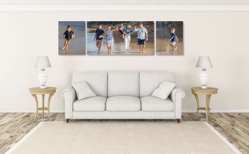 "CANVAS: One 60x30"" + two 24x30"". This package priced at $2895"