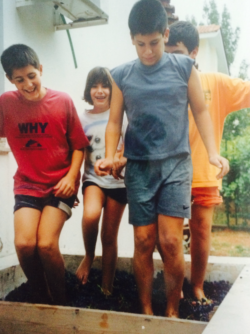 My little brother and his friends pressing the grapes with their feet [September 1998]