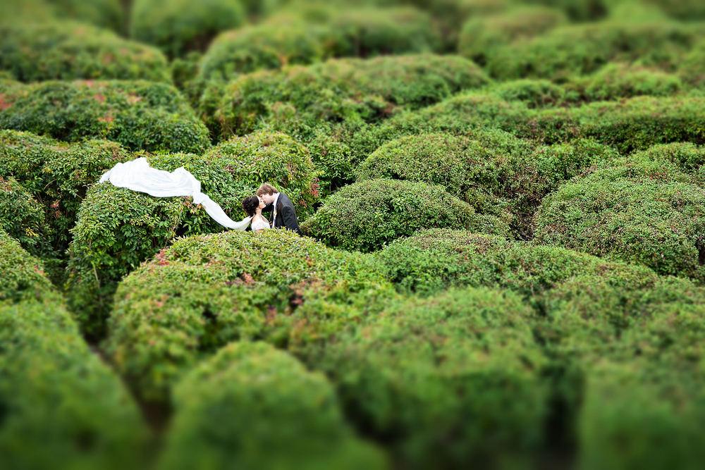 FotoJura Canon Contest 006.jpg